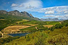 Explore the beautiful #Stellenboschwinelands with www.southafricacarrentals.net