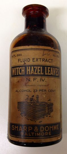 Antique Vintage Witch Hazel Leaves Sharp & by HanksVintageFinds, $10.00