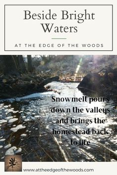 Snowmelt pours down the valleys and brings the homestead back to life Permaculture, Homesteading, Bring It On, How To Plan, Landscape, Water, Blog, Life, Gripe Water