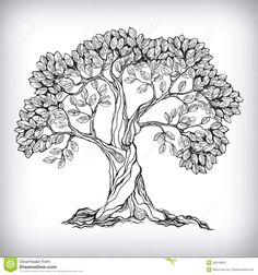 Hand Drawn Tree Symbol - Download From Over 28 Million High Quality Stock Photos, Images, Vectors. Sign up for FREE today. Image: 36019953