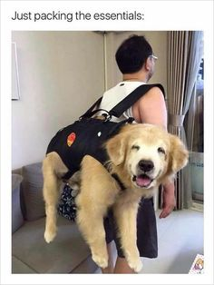 packing the essentials