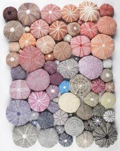 Knitted Sea Urchins _ ouriço do Mar Jolie Photo, Textures Patterns, Textile Art, Fiber Art, Sea Shells, Needlework, Knitting Patterns, Weaving, Textiles