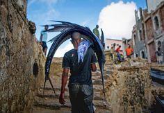 Frisch aus dem Meer vor Mogadischu stammt dieser große Fächerfisch, den ein somalischer Fischer auf den Markt trägt. Der Großteil des täglichen Fangs wird an die einheimische Bevölkerung verkauft, aber der Anteil am Export nimmt langsam zu.
