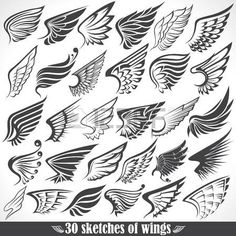 Illustration of The Vector image of Big Set sketches of wings vector art, clipart and stock vectors. Tattoo Drawings, Body Art Tattoos, Small Tattoos, Tatoos, Art Drawings, Wings Sketch, Wings Drawing, Wing Tattoo Designs, Neue Tattoos