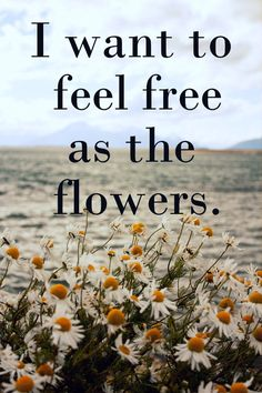 """I want to feel free as the flowers quote flowers life live free hippie simple boho flowerchild ~""""I met her by the Daisy Fields"""". Le Vent Se Leve, Proverbs 16 24, Life Proverbs, Hippie Quotes, Soli Deo Gloria, Hippie Life, Hippie Peace, Boho Life, Gypsy Life"""
