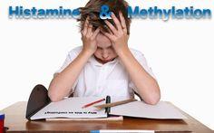 Histamine & Methylation