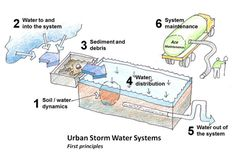 First Principles of Stormwater Management Using Green Infrastructure. Image: James Urban. http://www.deeproot.com/