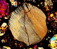 NWA 5206 meteorite thin section viewed through a polarizing microscope