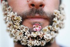 With Flowers In Your Beard