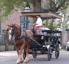 Been on the carriage tour, Charleston, SC