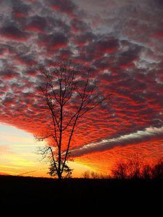 ♂ Amazing nature sunset glow