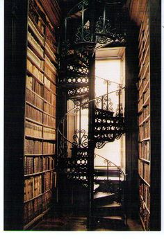 spiral staircase amidst the books