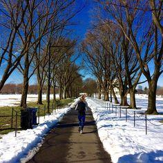 So nice to hit the roads again post #snowzilla ! #runflyingpig #washingtondc #marathontraining by darawford