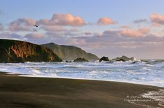 Windswept Coast - Pacifica California by Darvin Atkeson, via Flickr