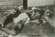 Nagasaki, Hiroshima, Nuclear Bomb, Kumamoto, Nonfiction, Wwii, Japan, History, World