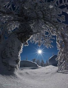 ☃☃☃ Tranquility. #winter #snow ☃☃☃
