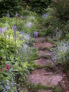 The perfect country garden path.