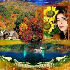 ~*~ Fall Colors! ~*~