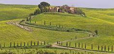Campagna dintorni di Murlo Siena - Countryside near Murlo