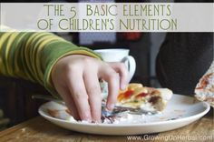 Photo Credit: slightly everything via Compfight cc  The 5 Basic Elements of Children's Nutrition