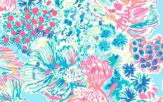 Lilly Pulitzer Backgrounds High Resolution Gypsea Wallpaper For Smartphone Lilly Pulitzer Backgrounds Iphone Wallpaper Wallpaper Backgrounds Free