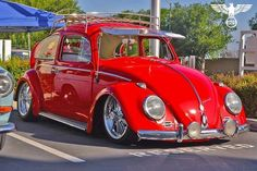 Red VW Classic and I want it