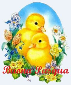 17 Best Buon Pasqua Images Easter Happy Easter Greetings