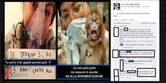 Sperimentazione animale: l