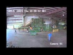 Hemp Inc Industrial Hemp Plant