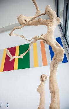 Zenporium's Coffee Tree Sculpture donated to Daniel's Spectrum - Artscape.  It looks stunning with the colourful background!
