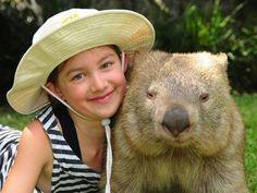 Wombat at Australia zoo Cute Wombat, Crocodile Hunter, Quokka, Australian Animals, Wildlife Conservation, Mans Best Friend, Pet Birds, Mammals, Koalas