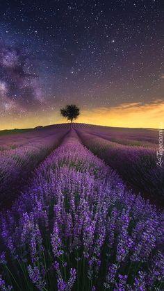 Znalezione przez Bing w: www. Lock Screen Wallpaper, Cool Wallpaper, Provence, Foto Nature, Green Scenery, Inspirational Wallpapers, Beautiful Sky, Acrylic Art, France