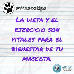 #Mascotips La dieta y el ejercicio son vitales... - Hospital Veterinario Oftalvet