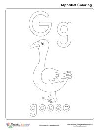 12 Best Kindergarten Literature Unit Ideas ~ Goose images