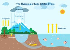 a water cycle template for students to visually understand the hydrologic  cycle  science illustration,