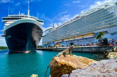 Iguana on a rock in Charlotte Amalie, St. Thomas in the Caribbean. Holland America Line's Westerdam is docked in the background, next to the...