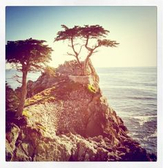 you guyzzz, never been dying to go out west to Cali, but I want to hit up Carmel. it looks amazing