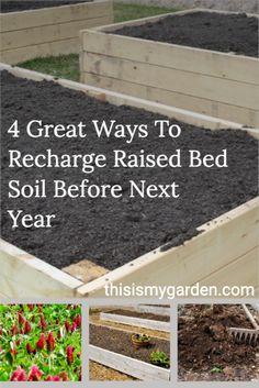 Compost Soil, Garden Compost, Composting, Garden Shrubs, Garden Plants, Garden Planting Layout, Raised Garden Beds, Raised Beds, Home Vegetable Garden