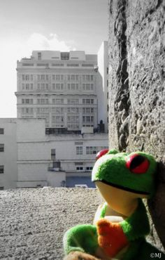 Froggy feels all alone in the world.