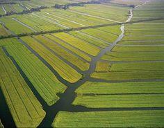 Luchtfoto van veenlandschap met polders bij Amstelveen.
