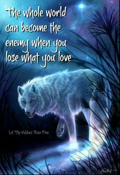 I absolutely love this ! I can see this happening if I ever lost my Andrew Lee ! Wolf Qoutes, Lone Wolf Quotes, Wolf Spirit Animal, Wolf Pictures, She Wolf, Warrior Quotes, Badass Quotes, Animal Quotes, Relationship Quotes