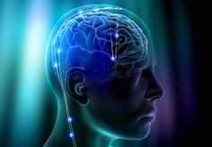 Top 10 Hottest Topics in Brain Sciences