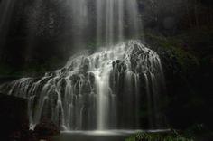 Original Nature Photography by Tarik Daria