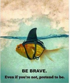 Be brave..Never let them see you sweat