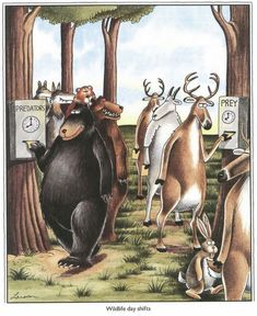 wildlife day shifts   the far side   by: gary larson