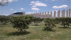 De Portada: Vino y arquitectura, una nueva cultura  La cultura del vino en México, si bien es milenaria, ha visto un importante repunte desde finales del siglo pasado. Grandes casas productoras se han sumado a este esfuerzo y para el tercer lustro del nuevo milenio la arquitectura es el ingrediente que hace la diferencia  http://www.podiomx.com/2015/09/de-portada-vino-y-arquitectura-una.html
