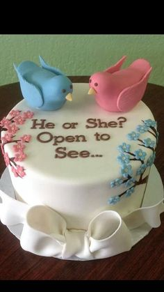 Cute gender reveal cake #aboveandbeyondcakes #elkgroveca