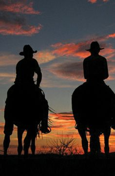 Go horseback-riding at a dude ranch in Yucca, Arizona.