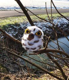 een sneeuwuiltje in de boom