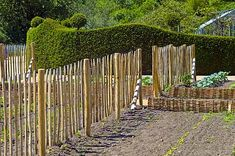 beeteinfassung – Google-Suche Vineyard, Texture, Wood, Google, Crafts, Outdoor, Searching, Surface Finish, Outdoors